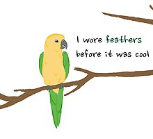 I Wore Feathers Before it was Cool by parrotproducts