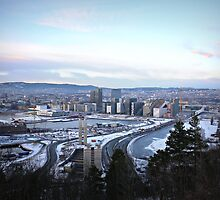 View of Oslo by Ms-Bexy