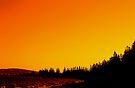 Esperance Evening by Richard Owen
