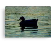 Duck silhouette on blue water. Canvas Print
