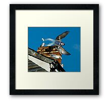 Even Fairies Can Be Cool. Framed Print