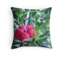 Early Spring Blooms Throw Pillow