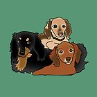 LH sausage dogs by Diana-Lee Saville