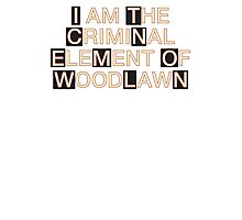 I am the criminal element of Woodlawn Photographic Print