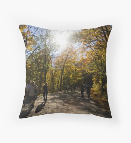 Mount Royal, Montreal Throw Pillow