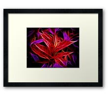 Purple and Red Leaves Framed Print