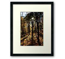 Mount Royal, Montreal - 2 Framed Print