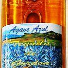 Agave Azul Tequila De Gordon'...One Full Quart by WhiteDove Studio kj gordon