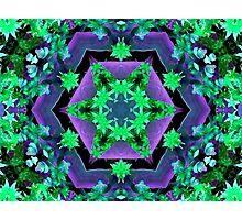 Purple and Green Hexagonal Kaleidoscope Photographic Print