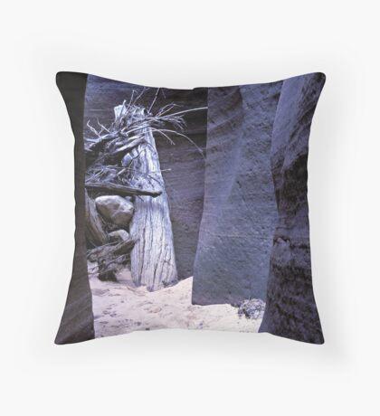 Slot Canyon Throw Pillow