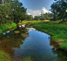 Glen Davis Creek by Warren. A. Williams