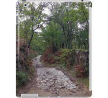 Ancient Roman Road near Perozinho, Portugal iPad Case/Skin