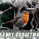Merry Christmas to all by Rivendell7