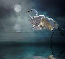Moonlight Rhapsody by Tarrby