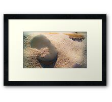 Sand and Rock #1 Framed Print