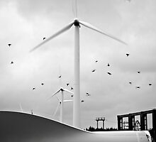 Wind Farm by jeremysphotog
