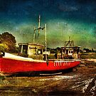 The Red Fishing Boat by Tarrby