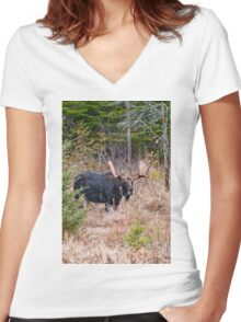 Bull Moose - Algonquin Park, Ontario Women's Fitted V-Neck T-Shirt