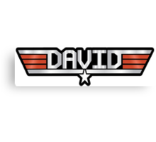 David callsign Canvas Print