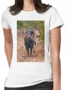 Bull Moose - Algonquin Park, Ontario Womens Fitted T-Shirt