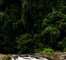 Rainforest Falls by theg8keeper