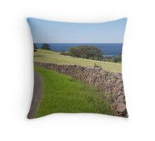 Saddle Back Mountain, New South Wales Throw Pillow