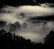 Misty Morn by Samantha Cole-Surjan