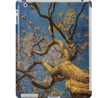 Curls iPad Case/Skin