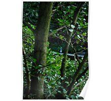 The elusive heron 2 Poster