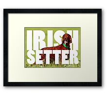 setter, irish setter, red dog, red setter Framed Print