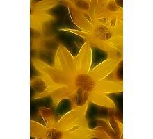 Hazy Yellow Photographic Print