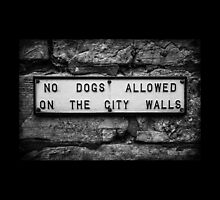 No Dogs Allowed on the City Walls by Nicole Petegorsky