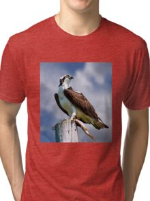 Osprey with Pike Tri-blend T-Shirt