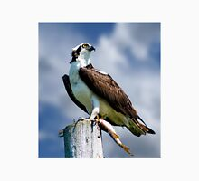 Osprey with Pike Unisex T-Shirt
