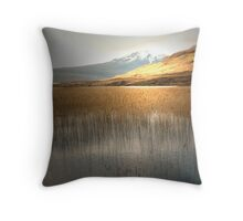 Golden Reeds Throw Pillow