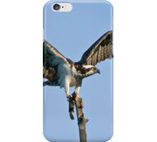Osprey - Ottawa, Ontario iPhone Case/Skin