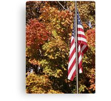Land of the Free. Canvas Print