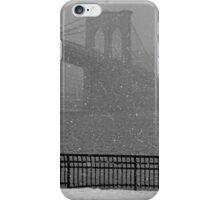 Winter Romance iPhone Case/Skin