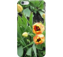 dancing amid the tulips iPhone Case/Skin