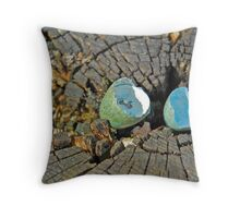 Blackbird egg Throw Pillow