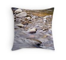 Breaking Old Habits Throw Pillow