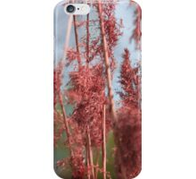 Colours of nature iPhone Case/Skin