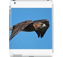 Red-tailed Hawk - Amherst Island, Ontario iPad Case/Skin