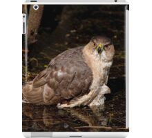Coopers Hawk- Ottawa, Ontario iPad Case/Skin