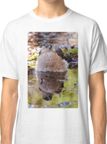 Coopers Hawk - Ottawa, Ontario Classic T-Shirt