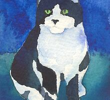 Black and white fat cat by CCallahan