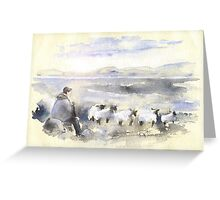 Sheep In Ireland Greeting Card