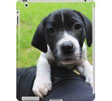 sweet pooch iPad Case/Skin