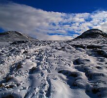Snowy Slopes by floto