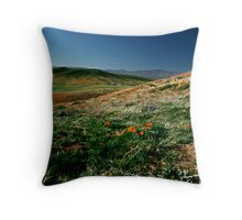 The Valley of Serenity Throw Pillow
